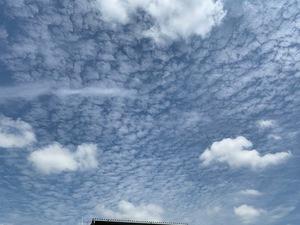 雨の雲と朝ドラと